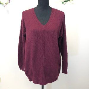 DREAMERS Maroon V-Neck Sweater